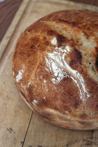 bread pix